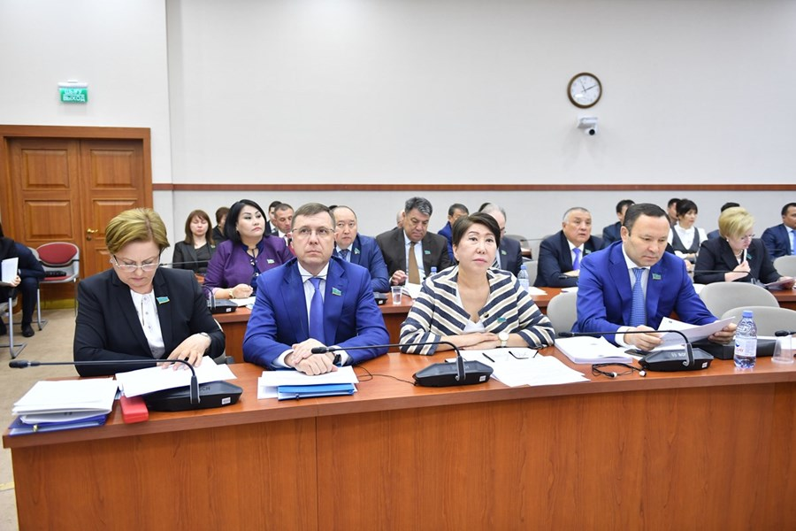14.05.2019 Presentation in the Mazhilis: on the regulation and development of the financial market and microfinance activity